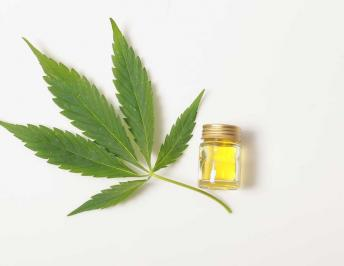 CBD is harmless: Its side effects are rare and mild