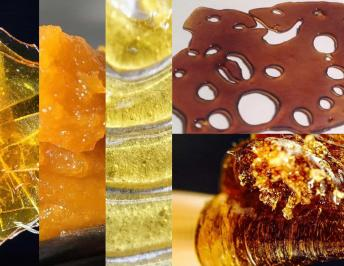 Common Ways for Consuming Cannabis concentrates