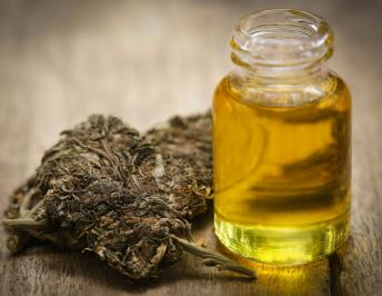 Top 6 Forms of Taking CBD Oil